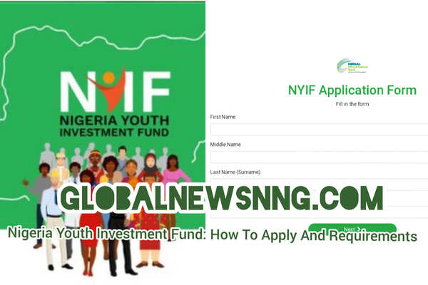 Nigeria Youth Investment Fund: How to Apply, Requirements, Register for NYIF